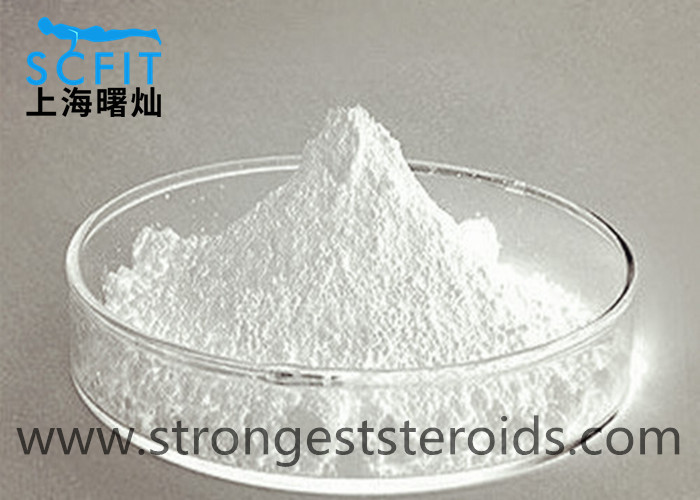 High Purity Estrogen  Progesterone Hormone Steroid Raw Powder Chlormadinone acetate CAS 302-22-7