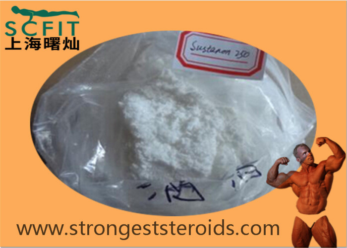 White Injectable Strongest Testosterone Steroid Testosterone Sustanon 250 WIth 99% Purity 5721-91-5