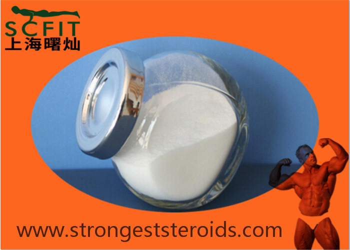 Methyldienedione 5173-46-6 Estra-4 9-Diene-3 17-Dione Top Quality 99%  Pharmaceutical Intermediates