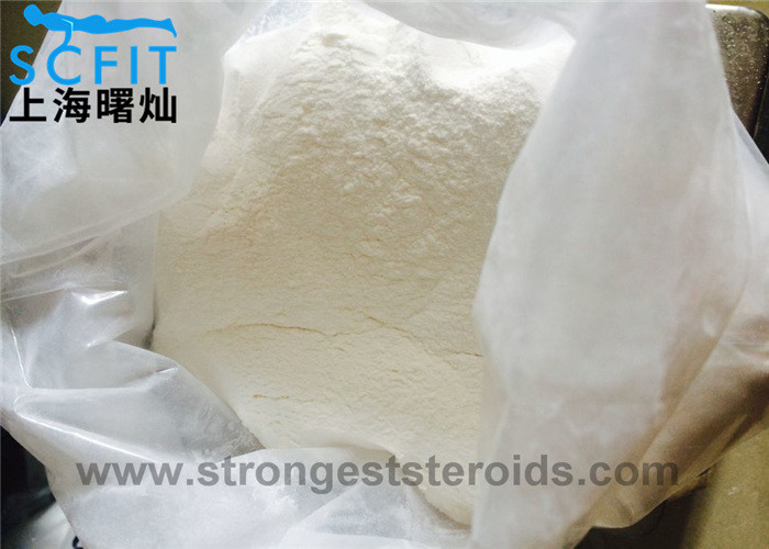 Testosterone Undecanoate 5949-44-0 Anabolic Steroid Powder For Muscle Building